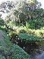 Crane Creek (Melbourne, Florida) 002.jpg