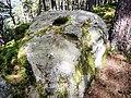 Cupules sur la plus grosse des pierres tremblantes.jpg