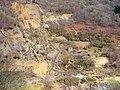 Cwm Rheidol Mine - geograph.org.uk - 728580.jpg