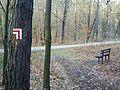 Czerwonak trail bench.jpg