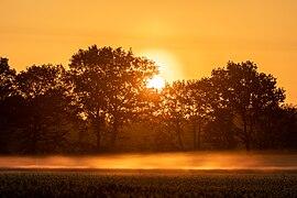 Dülmen, Kirchspiel, Dernekamp, Sonnenaufgang -- 2021 -- 8802-6.jpg