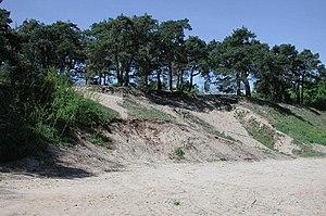 Island Sandhausen