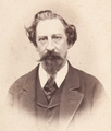 D. Fernando II - F.A.Gomes, c. 1880.png