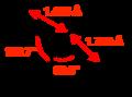 DMSO-CRC-MW-dimensions-2D.png