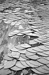 dak koor - venhuizen - 20240873 - rce