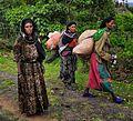 Daro Tribe, Ethiopia (8269957394).jpg