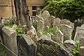 De Joodse begraafplaats - panoramio (1).jpg