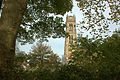 De toren van de Sint Maartenskerk in Zaltbommel..jpg