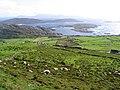 Derrynane National Park, Kerry - geograph.org.uk - 250392.jpg