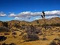 Desert Hike (8311766119).jpg