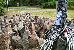 Detail of Monument with Israeli Flag - Rumbula Forest Holocaust Site - Riga - Latvia.jpg