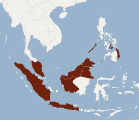 Distribution of Kerivoula pellucida.png