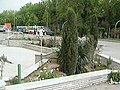 District 11, Mashhad, Khorasan Razavi, Iran - panoramio - Masoud Akbari (1).jpg
