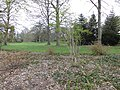 Doorn - Hydepark Park RM530562.JPG