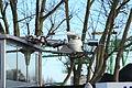 Dortmund - DEK + Julius Rütgers (ENI 04803280) (Weidenstraße-Im Ellingroth) 09 ies.jpg