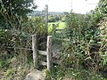 Double Stile with bridging section over ditch - geograph.org.uk - 573245.jpg