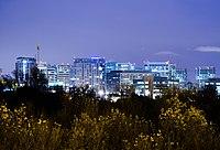 Downtown SJ at Night cropped1.jpg
