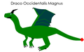 Draco Occidentalis Magnus.png