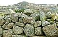 Drystone wall near Castlewellan (2) - geograph.org.uk - 1123615.jpg