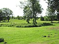 Dunston Hall Hotel - the golf course - geograph.org.uk - 1351375.jpg