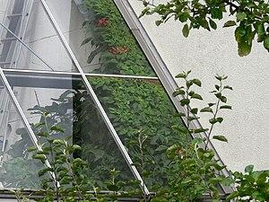EVA- Lanxmeer Greenhouse11 2009