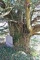 Eglwys Sant Sadwrn Henllan Sir Ddinbych Denbighshire cymru 36.JPG