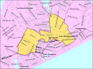 East Hampton North, New York Census-designated place in New York, United States