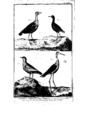 Encyclopedie volume 5-081.png