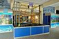 Energy Ball - Bardhaman Science Centre - Bardhaman 2015-07-24 1301.JPG