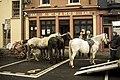 Ennistymon Horse Market.jpg