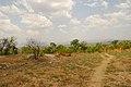 Entebbe, Uganda - panoramio.jpg