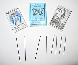 Entomological equipment for mounting and storage - Entomological pins