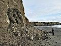 Eroding cliffs, Aberdaron (1) - geograph.org.uk - 1733608.jpg
