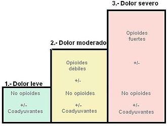 Escala Visual Analoga Del Dolor Pdf