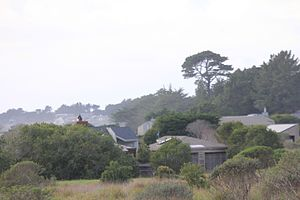 Joseph Esherick (architect) - View of Esherick Sea Ranch house (1966) from the street looking Northwest.
