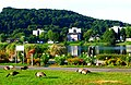 Essen-Kettwig - Ruhrpromenade - panoramio (1).jpg