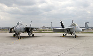 F-14B and FA-18EF VF-VFA-11 Parked 3 - 2005.jpg