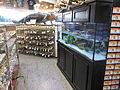 FL Citrus Center I-95 CR 210 Gator Goods.JPG