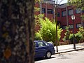 Facultad de Ciencias - panoramio - Ricardo Ricote Rodrí… (1).jpg