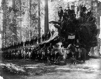 6th Cavalry Regiment - 1899, Yosemite, F Troop of the 6th Cavalry. (Note the commander's wife upper right.