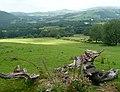 Farmland south-east of Tregaron, Ceredigion - geograph.org.uk - 900292.jpg