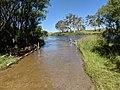 Farringdon Crossing, Farringdon, New South Wales.jpg