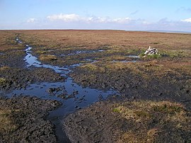 Featherbed Moss - geograph.org.uk - 245922.jpg