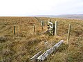 Fences on Bloch Hill - geograph.org.uk - 603779.jpg