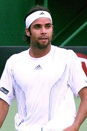 Fernando Gonzalez 2007 Australian Open R2.jpg