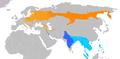 Ficedula parva & Ficedula albicilla distribution.png