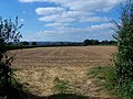 Field Next To Ollerton Lane - geograph.org.uk - 549089.jpg