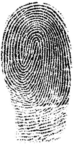 Fingerprint (PSF).png