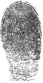 Fingerprint (PSF).png