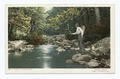 Fishing, Adirondacks, N. Y (NYPL b12647398-63052).tiff